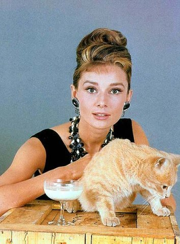 Одри Хепберн и Кот. Фото / Audrey Hepburn and Cat Rhubarb. Photo