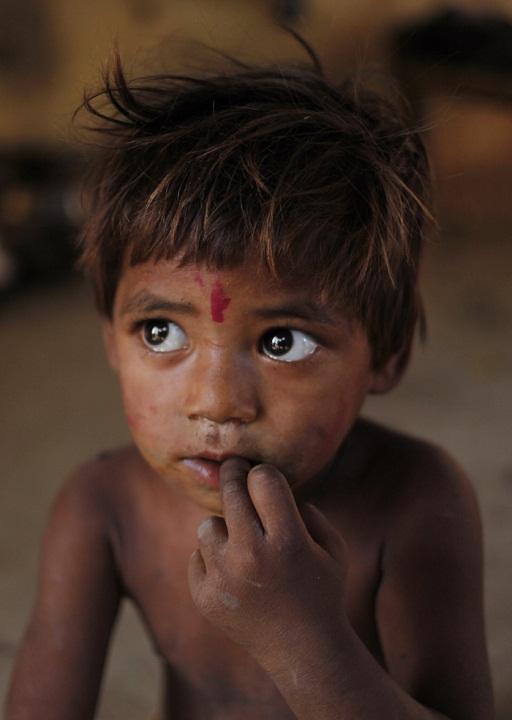 красивый мальчик-индус. фото