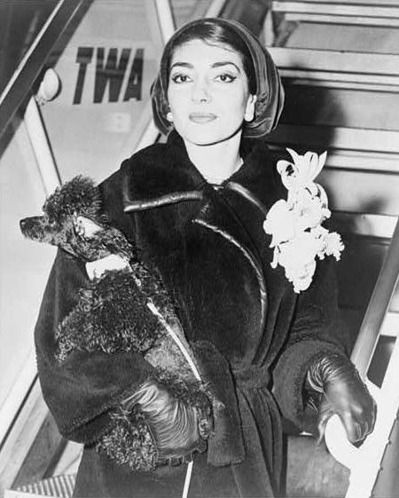 Мария Каллас c собакой. Фото / Maria Callas & dog photo