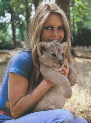 Брижит Бардо и животные (фото): львёнок / Brigitte Bardot & animals (Photos): lion' cub