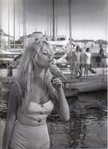 Брижит Бардо целует птичку. Фото / Brigitte Bardot kissing a bird. Photo
