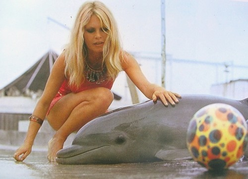 Брижит Бардо и животные (фото): дельфин / Brigitte Bardot & animals (Photos): dolphin