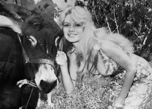 Брижит Бардо и животные (фото): ослик / Brigitte Bardot & animals (Photos): donkey