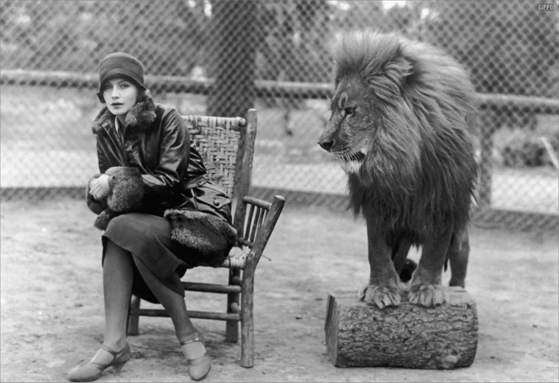 Грета Гарбо и лев. Фото / Greta Garbo and lion. Photo